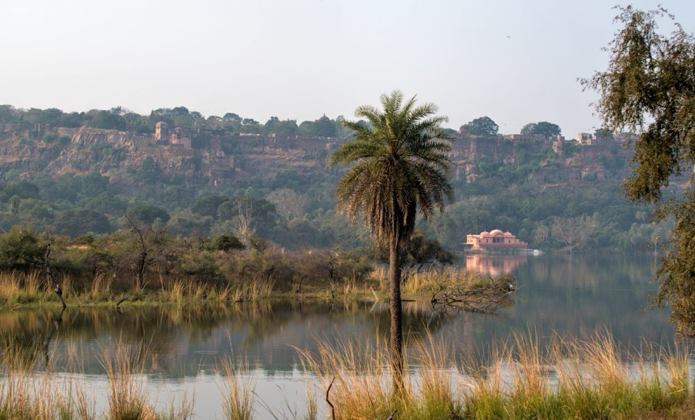 lake at Ranthambhore